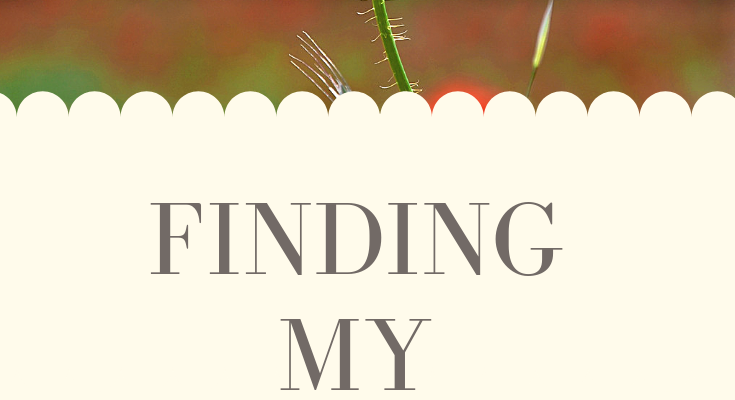 A picture of a single poppy with the title Finding My Voice in Grief authored by Christi Bovee, bereaved grandmother and owner of The Voice Love Co. Christi shares her heartbreak at losing her preterm first grandchild here.